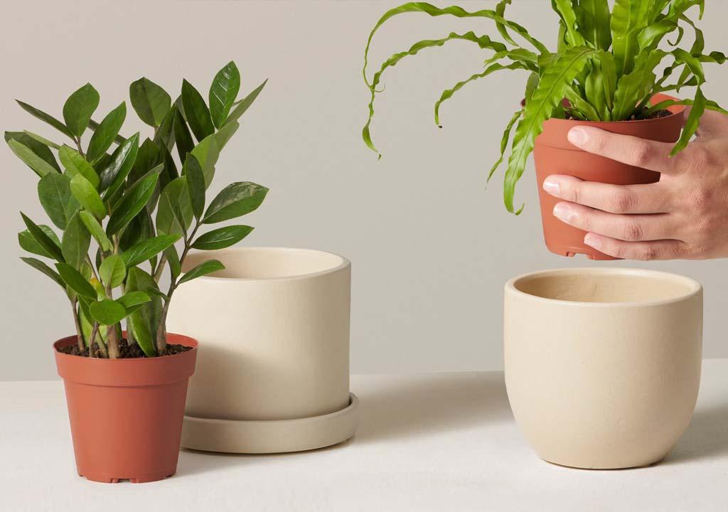 Buying pot planter in 2021
