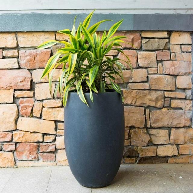 Criteria when choosing fiberglass pots Vietnam to plant plants