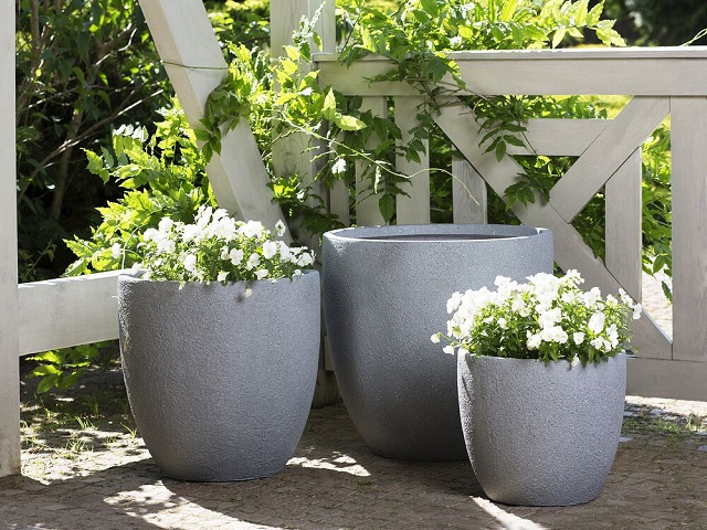 How to choose the right cement pot for the plant?